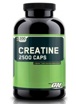 Optimum Nutrition Creatine 2500 mg.