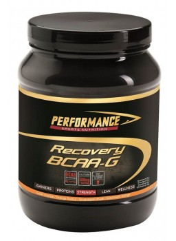 Performance Recovery BCAA-G