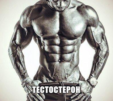 Продукты повышающие и понижающие уровень тестостерона