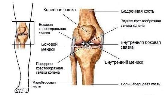 Народное средство лечения артроза стопы ног